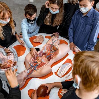 Интерактивный Музей Здоровья