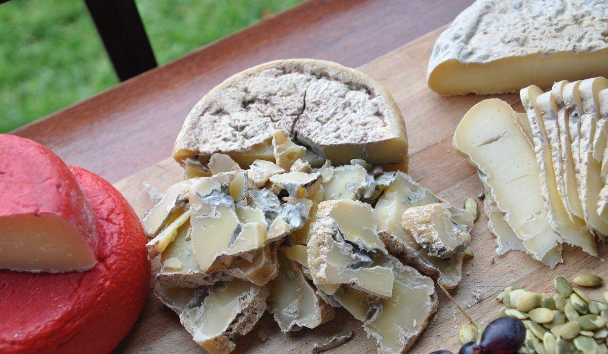 Сырное лето в Ярославии: приглашаем в гости!