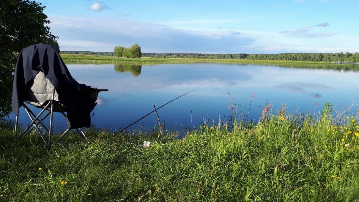 Море рыбы – в Рыбинском море!